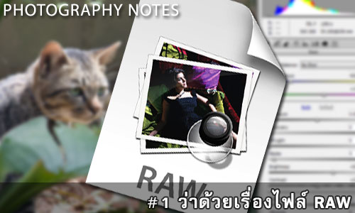 Photography-Notes-1-banner
