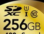 Lexar SDXC 256GB
